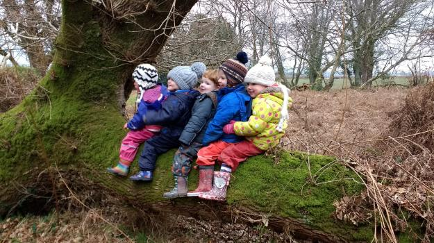 Children sat on a mossy log