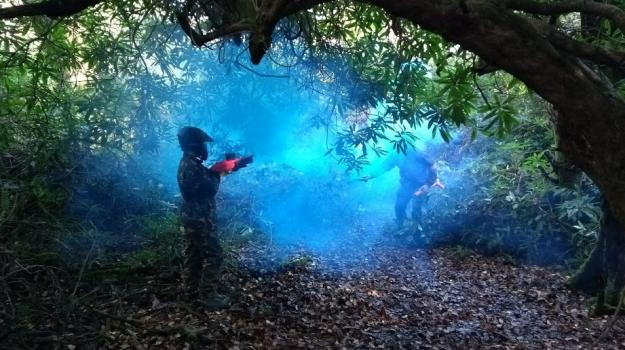 children paint splatballing each other in the woods