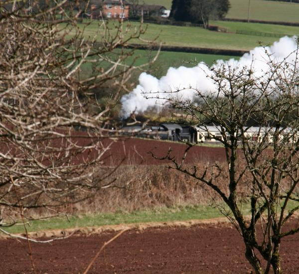 West Somerset Railway seen from the woods