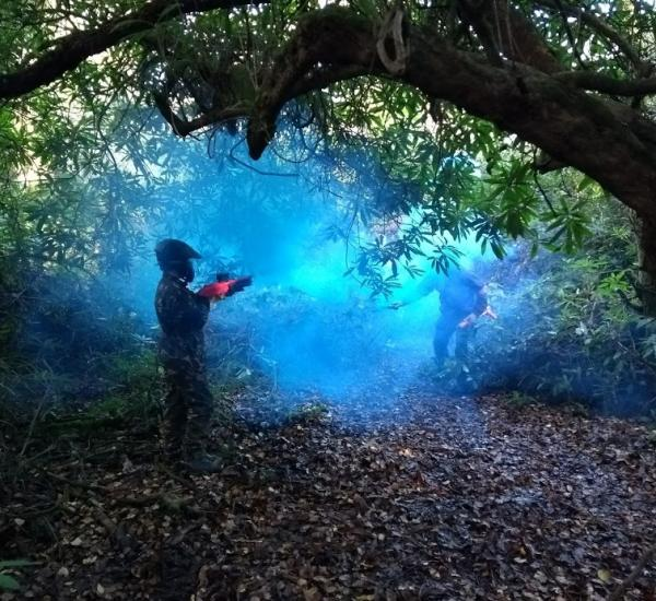 splat paint balling in the woods