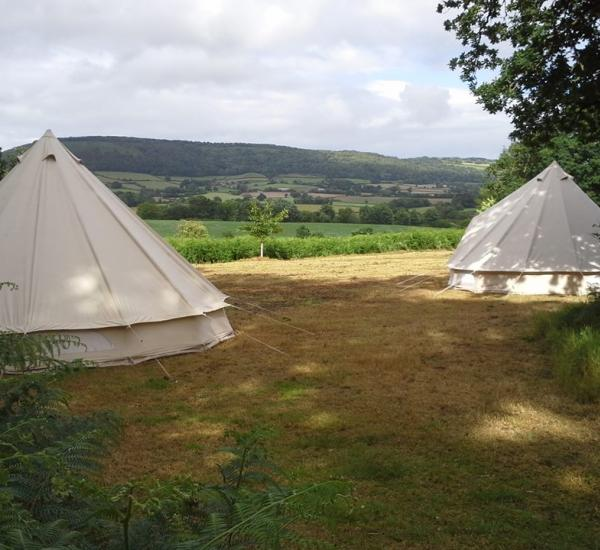 bell tents in the wood