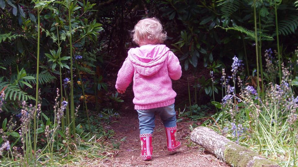 Child going for a walk in the woods