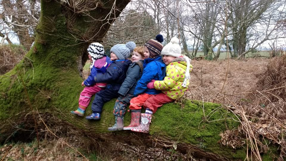 A group of children sitting on a tree stump