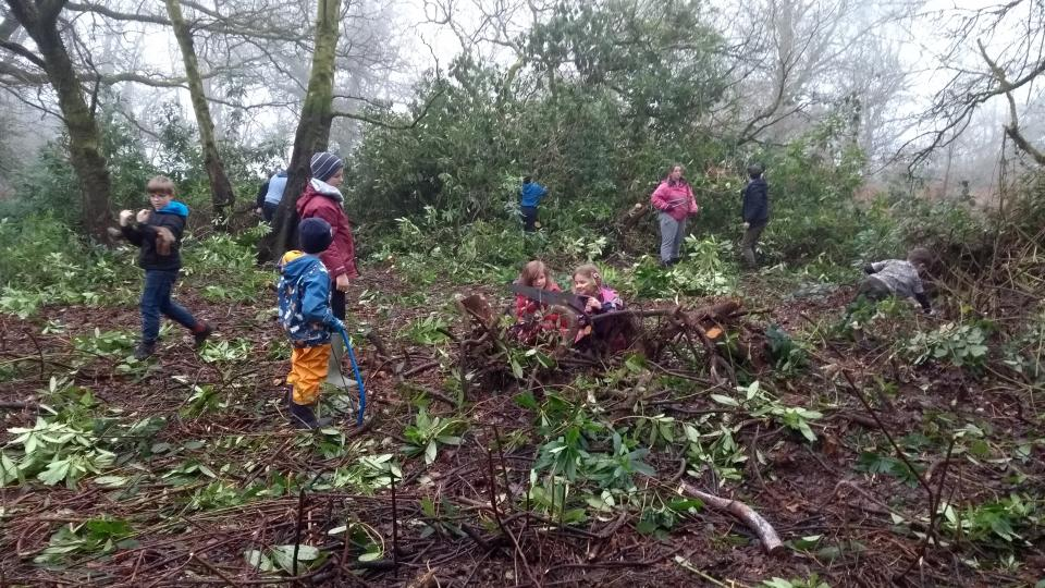 children clearing the rhodo